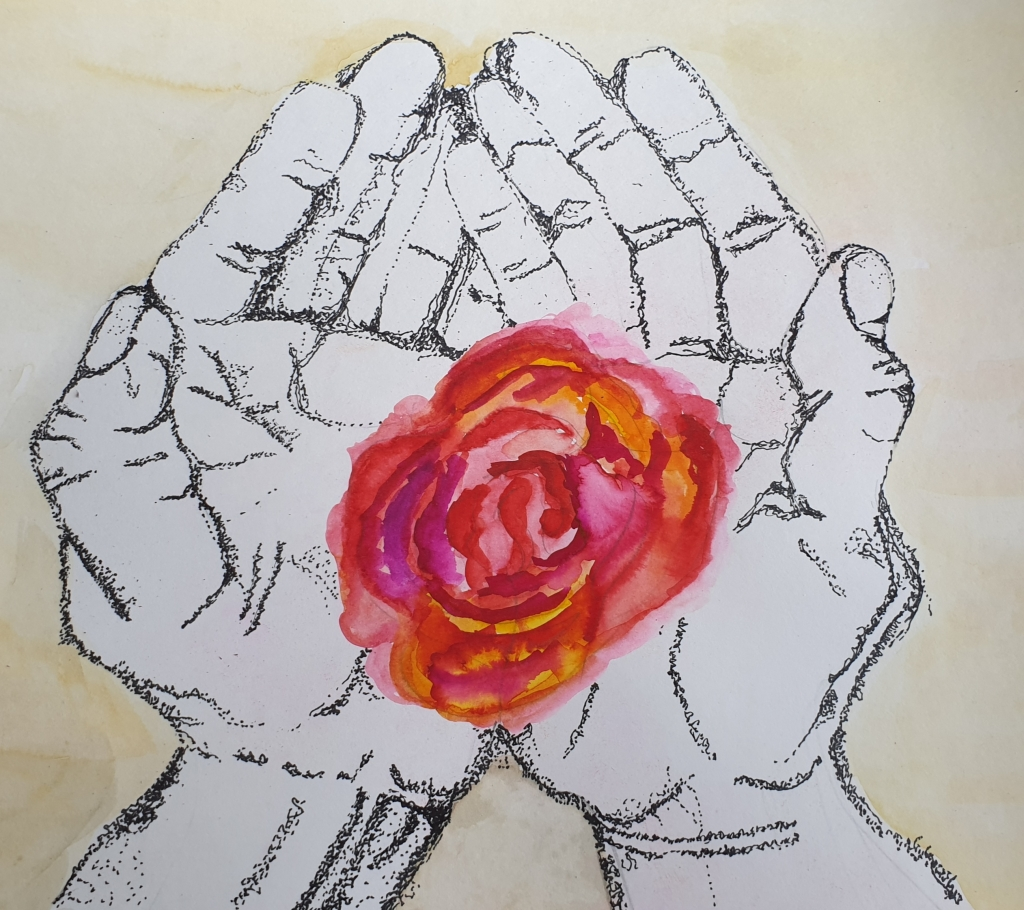 Illustrated hands holding a beautiful, red flower.