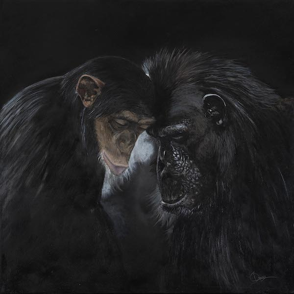 A painting of two monkeys with their foreheads bent towards each other in unison. The monkey on the left, appears to be a chimpanzee and the monkey on the right appears to be a larger ape.