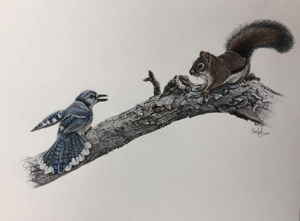 The art piece depicts a squirrel and a blue jay on a tree branch. The branch looks old, and is grey in color. The squirrel is looking at the bird, who seems to be territorial, as it has its beak slightly opened and its winged hinged back behind it. The squirrel is seen from its side profile; it has brown fur, a white underbelly, a bushy tail, and whiskers. The Blue jay's side profile is depicted looking at a slight angle from behind, and we can see its blue, white, and black spotted wings and tail feathers.