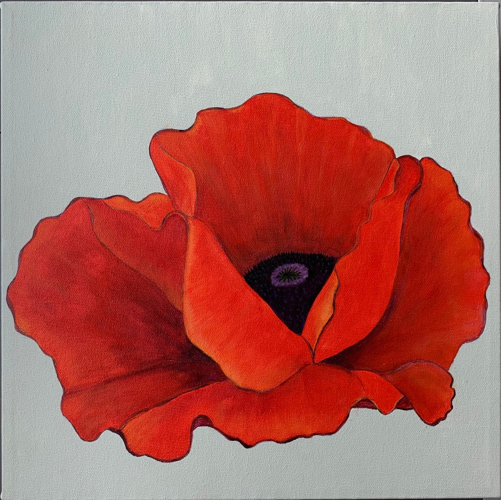 On a white canvas background there is a large painted red poppy flower with a black center.
